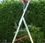 10 rung bps access combination ladders-150-150
