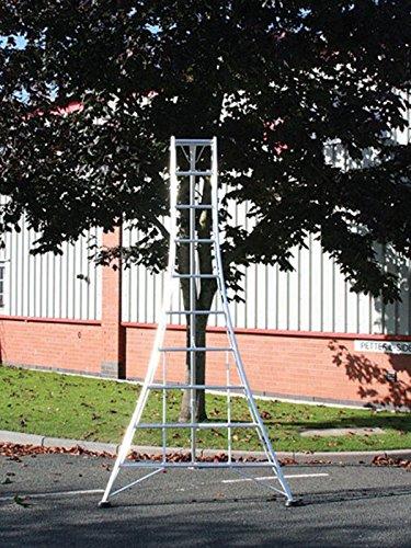 Ladders Online Trade 3m Standard Garden Hedge Cutting Tripod Ladder Lightweight aluminium frame double rung treads review