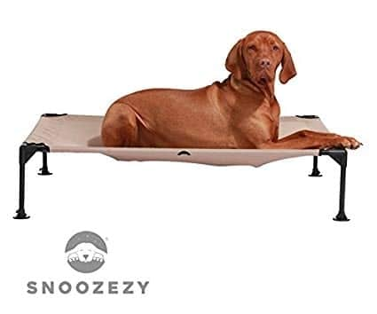 Snoozezy orthopaedic elevated dog bed