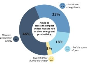 survey of how winter affcets peoples productivity levels