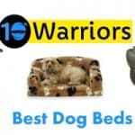 Best Dog Beds 2021 - Reviewed And Rated By Dog Size