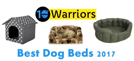 best dog beds 2017