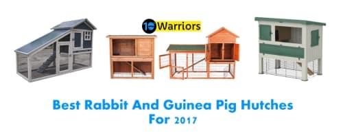best rabbit hutch 2017 best guinea pig hutch 2017