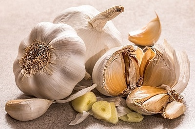 eating garlic can help lessen the effects of a cold