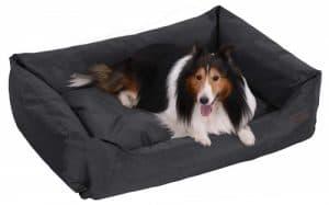 FEANDREA Dog Bed XXL