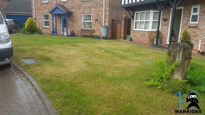 sandy soil drought stressed lawn
